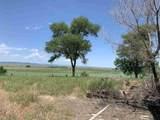 14194 Oral Road - Photo 30