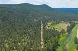 22543 Aspen Drive - Photo 3