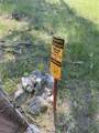 11406 Pass Creek Road - Photo 5