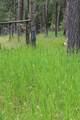 21850 Big Elk Place - Photo 26
