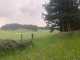 TBD Sidney Trail - Photo 16