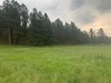 TBD Sidney Trail - Photo 2