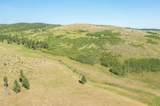 TBD Custer Limestone Road - Photo 10
