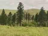 TBD Custer Limestone Road - Photo 19