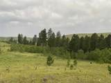 TBD Custer Limestone Road - Photo 21
