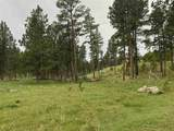 TBD Custer Limestone Road - Photo 24
