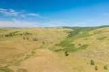 TBD Custer Limestone Road - Photo 3