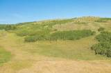 TBD Custer Limestone Road - Photo 4