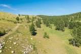 TBD Custer Limestone Road - Photo 9