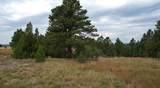 Camp Lakota 2 Red Canyon Road - Photo 15