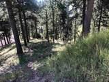 Lot 3 Deer Path - Photo 1