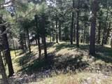 Lot 3 Deer Path - Photo 4