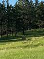 11952 Lone Elk Drive - Photo 11