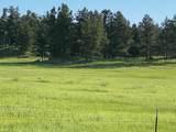 11952 Lone Elk Drive - Photo 2