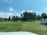 11952 Lone Elk Drive - Photo 4