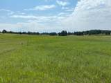 11952 Lone Elk Drive - Photo 5