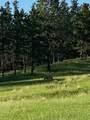 11952 Lone Elk Drive - Photo 7