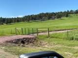 11952 Lone Elk Drive - Photo 8