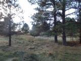 112 Trails End Court - Photo 9
