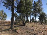 Eagles Nest 1 Address Not Published - Photo 10