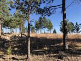 Eagles Nest 1 Address Not Published - Photo 11