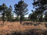 Eagles Nest 1 Address Not Published - Photo 15