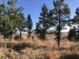 Eagles Nest 1 Address Not Published - Photo 18