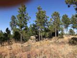 Eagles Nest 1 Address Not Published - Photo 19