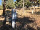 Eagles Nest 1 Address Not Published - Photo 21
