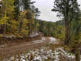 TBD Rocky Point Road - Photo 21