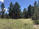 Vista Meadows 5 Elk Run Road - Photo 7