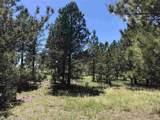 Vista Meadows 5 Elk Run Road - Photo 8