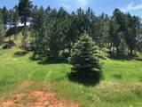 TBD Oak Drive - Photo 2