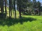 TBD Oak Drive - Photo 6