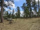 25334 Wind Dance Ranch Road - Photo 5
