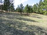 25334 Wind Dance Ranch Road - Photo 6
