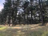 TBD Fox Ridge Road - Photo 17