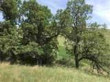 3637 Twisted Oak Road - Photo 1