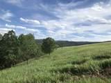 3968 Twisted Oak Road - Photo 2