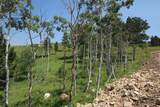 LOT 6 Majestic Heights Road - Photo 6