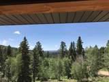 11026 Eagle Trail - Photo 3