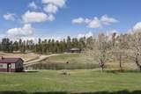 21652 Hay Creek Road - Photo 2