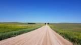 28408 Pheasant Drive - Photo 31