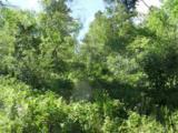 Bellefish Road - Photo 1
