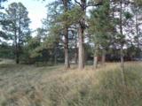 112 Trails End Court - Photo 4