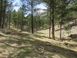 25334 Wind Dance Ranch Road - Photo 1