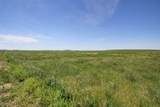 12547 Bighorn Road - Photo 13