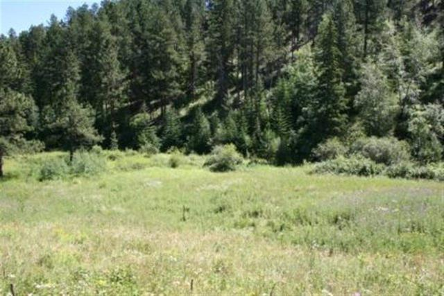 TBD Two Bit Road, Deadwood, SD 57732 (MLS #42928) :: Dupont Real Estate Inc.