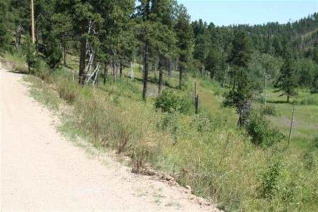 TBD Two Bit Road, Deadwood, SD 57732 (MLS #42933) :: Dupont Real Estate Inc.