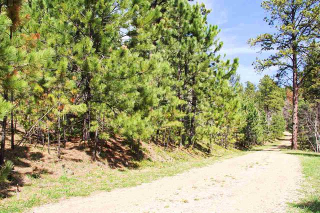 Lot 25 Cuba Road, Deadwood, SD 57732 (MLS #47923) :: Christians Team Real Estate, Inc.